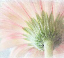 Pastel sweet by Eliza1Anna
