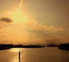 Sunny Govan by Duncan  Wilson