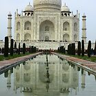 Taj Mahal - Agra, India by fionapine