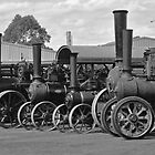 Steam Engine Line Up by kathiemt