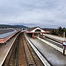 Aviemore Railway Station  by Lilian Marshall