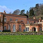 National Trust Killerton House, Devon by lynn carter