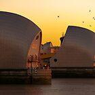 Thames Barrier, London by Darren Sharp