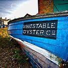 Oyster Catcher by hebrideslight