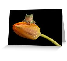 Are you sitting comfortably Greeting Card