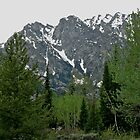 Teton Mountain Scene 2011 by Leslie Belmonti