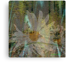 Forest of Daisies... Canvas Print