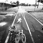 Waratah Bikeway by Daniel Rankmore