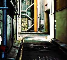 Perth Alleyway by Trish Woodford