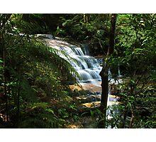 Rainforest Waterfall Photographic Print