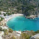 Granadella Beach by Fay  Hughes