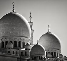 Sheikh Zayed Mosque in Monochrome - UAE by Daniel Nahabedian