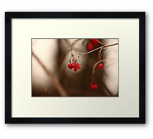 Abstract Red Berries Framed Print