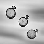 Time Flies by peterlevi