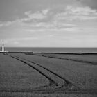 Lighthouse Lines by Hugh O'Brien