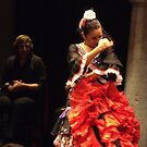 Flamenco in Seville by juliecronin
