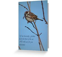 Your Heavenly Father Feeds the Birds Greeting Card