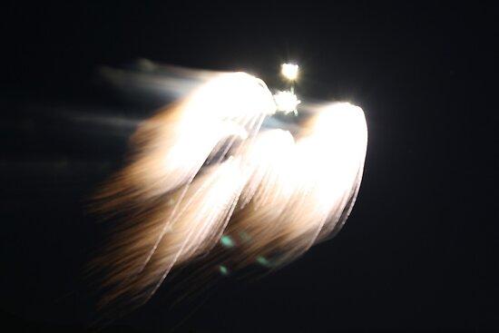 Celestrial Firework Read Description by IreKire