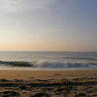 Morning Waves by Trish Nicholas