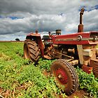 """New Group in Town """"Massey Ferguson & the Potatoes"""" by Stephen Gregory"""
