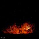 Hot Seat by Pene Stevens