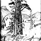 The last few trees by alexofalabama