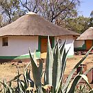 round hut in Botswana by Anne Scantlebury