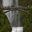 An Oregon Favorite by Nick Boren