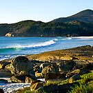 Surf at Squeaky Beach, Wilsons Promontory National Park in Victoria. by johnrf