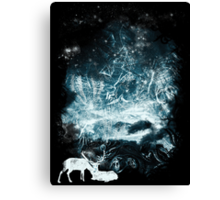Aurora animalia Canvas Print
