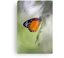 The Butterfly Effect. Metal Print