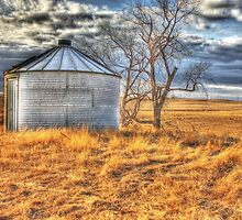 North Dakota Ghost Town leftovers by Debbie Roelle