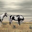 Lauri's Wild Horses by Walter Colvin