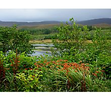 A Little Corner Of Ireland For St Patrick's Day Photographic Print
