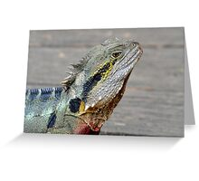 The Australian Eastern Water Dragon. Brisbane, Queensland, Australia. Greeting Card