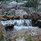 Montserrat Stream by Sue Ballyn