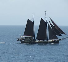 Pirate Ship by ScenerybyDesign