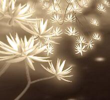 Flower_01  by Yanieck
