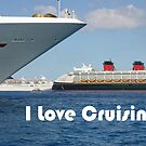I Love Cruising by Chris  Bradshaw