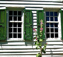 Windows, Clarke House, Princeton Battefield National Park, Princeton NJ by Jane Neill-Hancock
