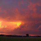 Stormy Sunset over Yan Yean by Pauline Tims