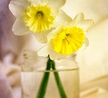 Two Daffodils by Lynn Starner