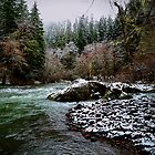 Santiam River And Snow by Charles &amp; Patricia   Harkins ~ Picture Oregon