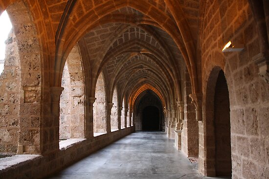 Cloister of the Monastério de Piedra by Emazevedo