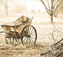 ANTIQUE WHEELBARROW by Pauline Evans
