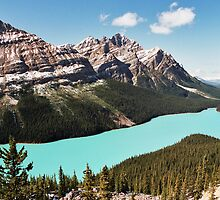 Peyto Lake by MendipBlue