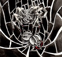 Spider's Web by ImagineMyselfAs