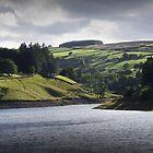 Lower Laithe Reservoir by redown