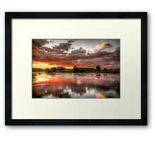 Swamp Glass 2 Framed Print