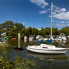 Wynnum Creek, Brisbane, QLD Panorama by Jennifer Bailey
